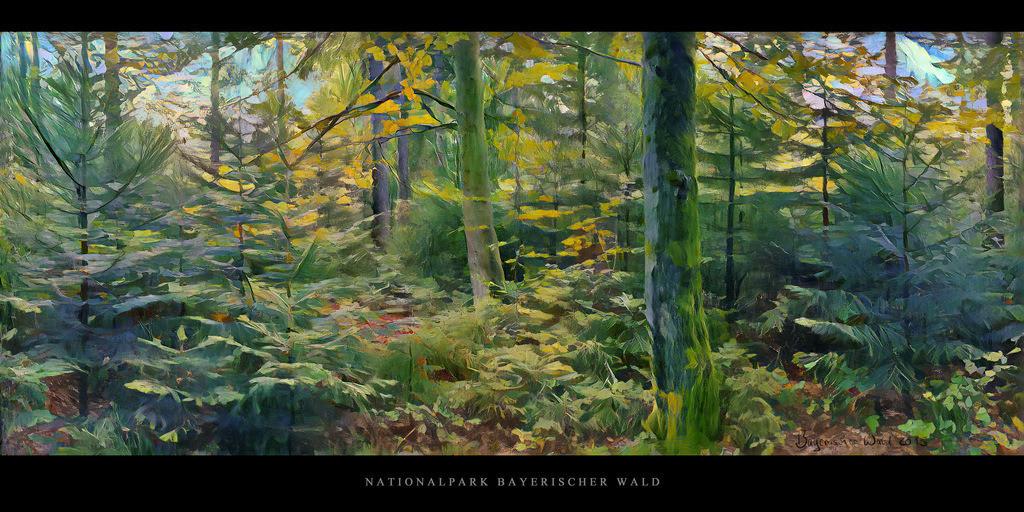 Gemälde Nationalpark Bayerischer Wald | Gemälde Bergmischwald mit Fichten, Tannen und Buchen im Nationalpark und Mittelgebirge Bayerischer Wald