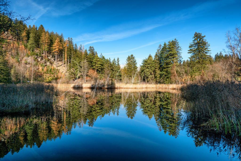 Lanser Moor | Herbst am Lanser Moor