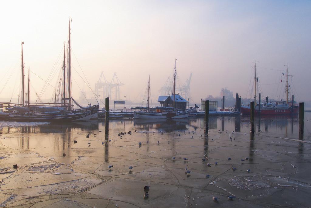 Museumshafen Oevelgönne | Morgenstimmung im Museumshafen Oevelgönne in Hamburg