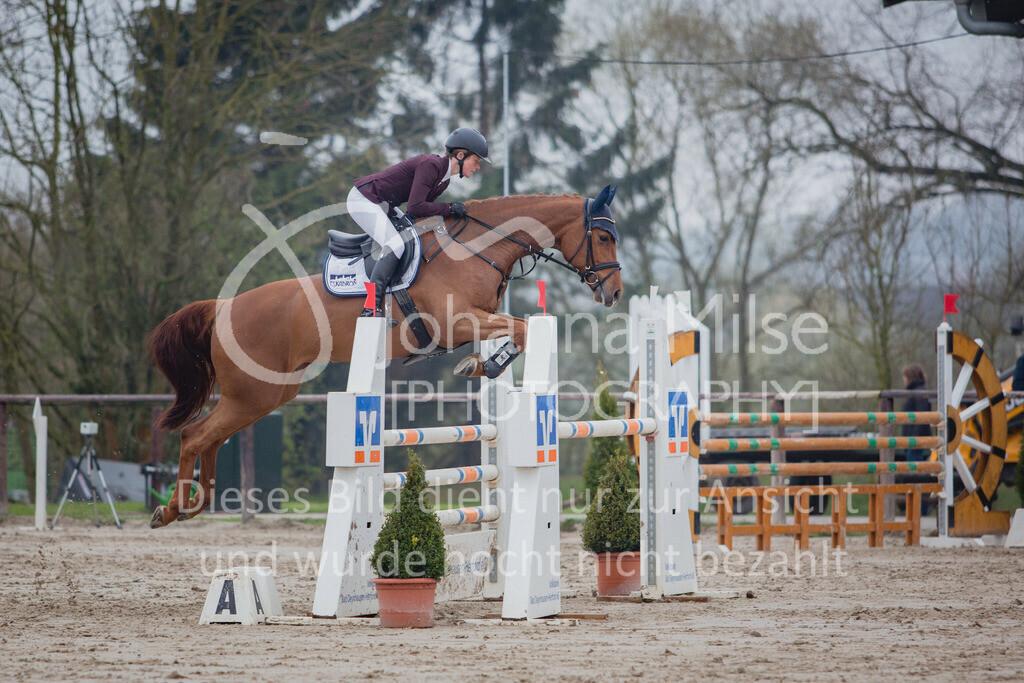 190404_Frühlingsfest_Sprpf-L-119 | Frühlingsfest Herford 2019 Springpferdeprüfung Kl. L
