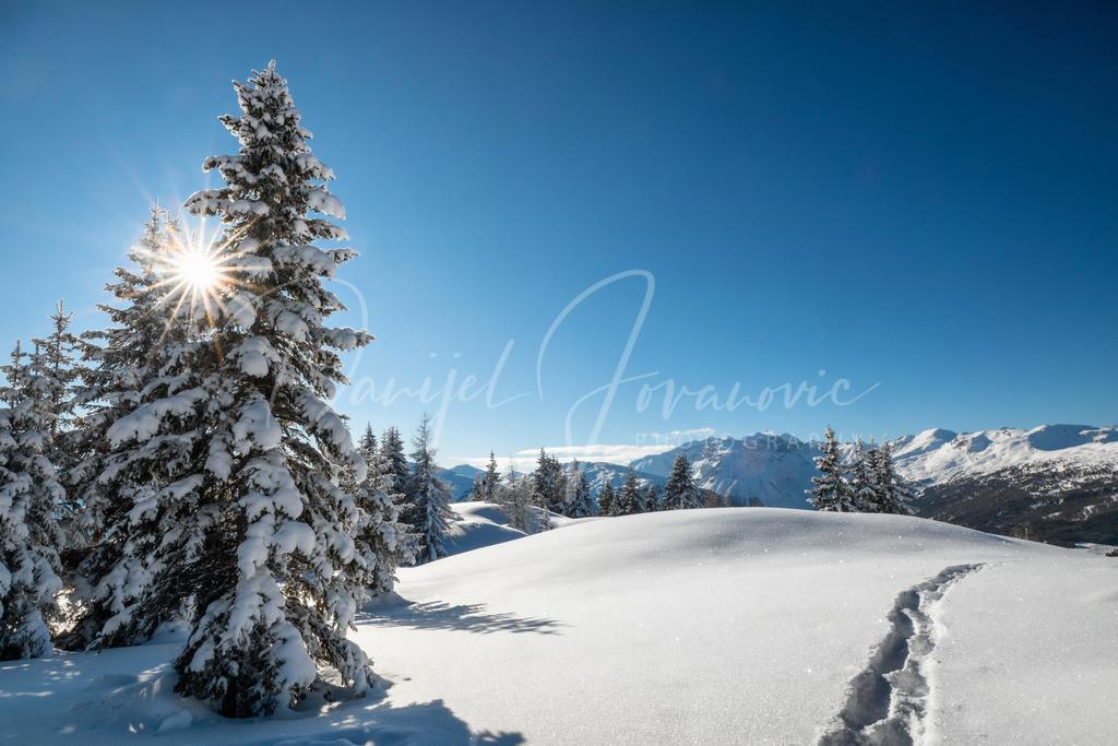 Winter Wonderland | Schneeschuhwandern im Wipptal