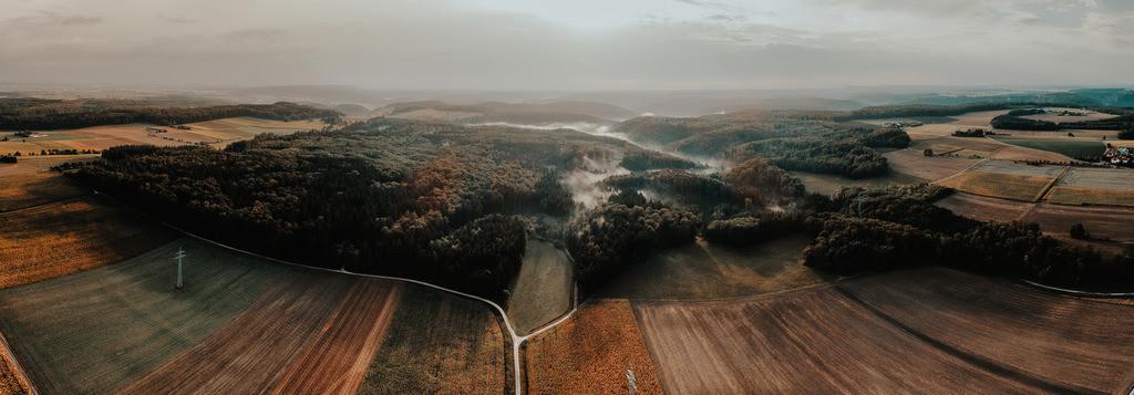 Nebel_nach_Regen-0125-Bearbeitet-Bearbeitet-2