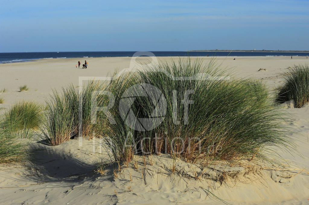 DSC_1588 | Baltrum/Blick nach Langeoog