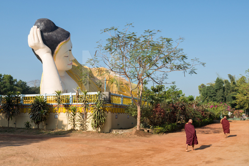 MW0115-5448 | Myanmar | Mönche kehren in Bago vom Almosengang zurück.