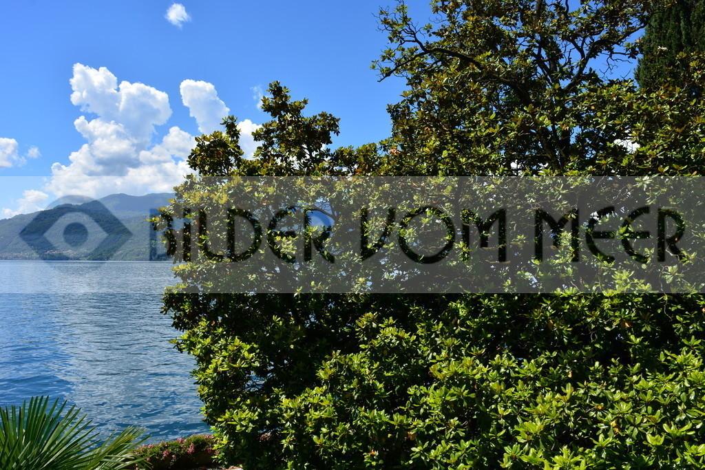 Foto Landschaft | Foto Landschaft Lago di Lecco