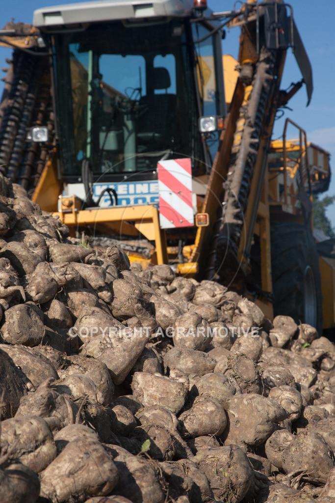 20120916-_MG_9074 | Rübenroder bei der Ernte - AGRARFOTO