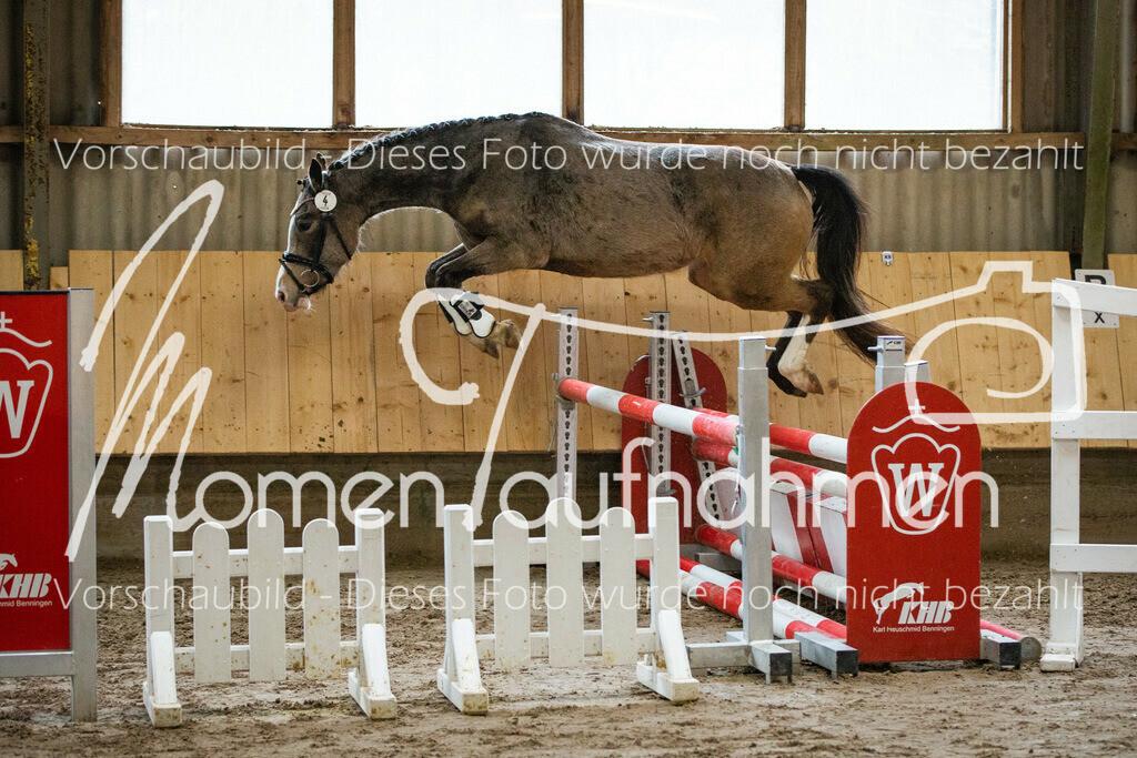 Freispringen-Pony-3j-28