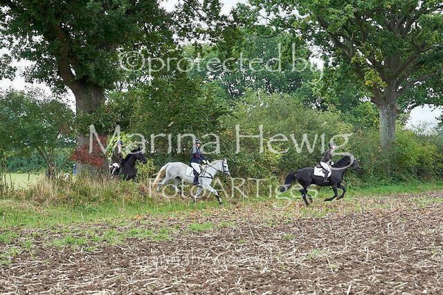 Jagd Perdoel  214649_Marina Hewig
