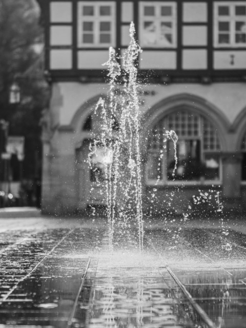 Celle 24.10 (10) | Celle und Umgebung