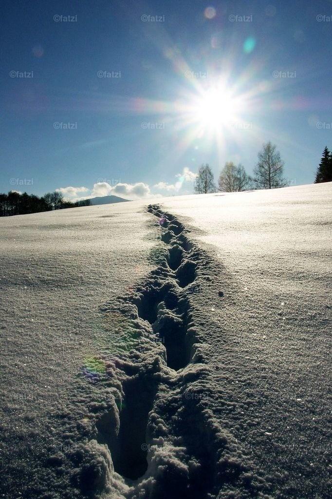 Winter2-11.05_0461