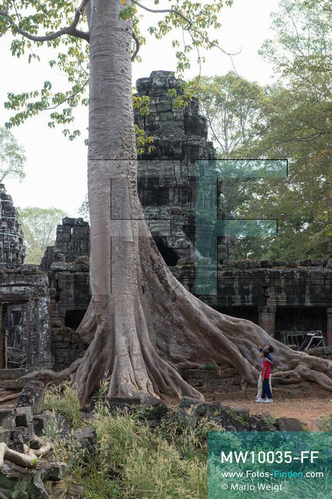 MW10035-FF | Kambodscha | Siem Reap | Reportage: Sombath erkundet Angkor | Sombath mit seinem Onkel Kim Sour am großen Kapokbaum im Tempel Banteay Kdei.  Der achtjährige Sombath lebt in Kambodscha im Dorf Anjan, sechs Kilometer westlich von Siem Reap entfernt. In seiner Freizeit nimmt ihn manchmal sein Onkel in die berühmte Tempelanlage von Angkor mit. Besonders mag er die riesigen Wurzeln der Kapokbäume, die auf den alten Mauern wachsen. Seine Lieblingstempel in Angkor sind Ta Prohm, Banteay Kdei und Preah Khan.  ** Feindaten bitte anfragen bei Mario Weigt Photography, info@asia-stories.com **