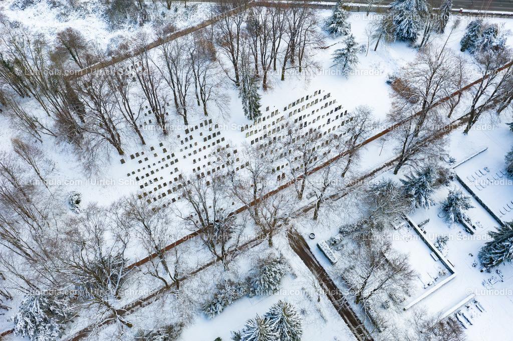 10049-51259 - Halberstadt _ Jüdischer Friedhof