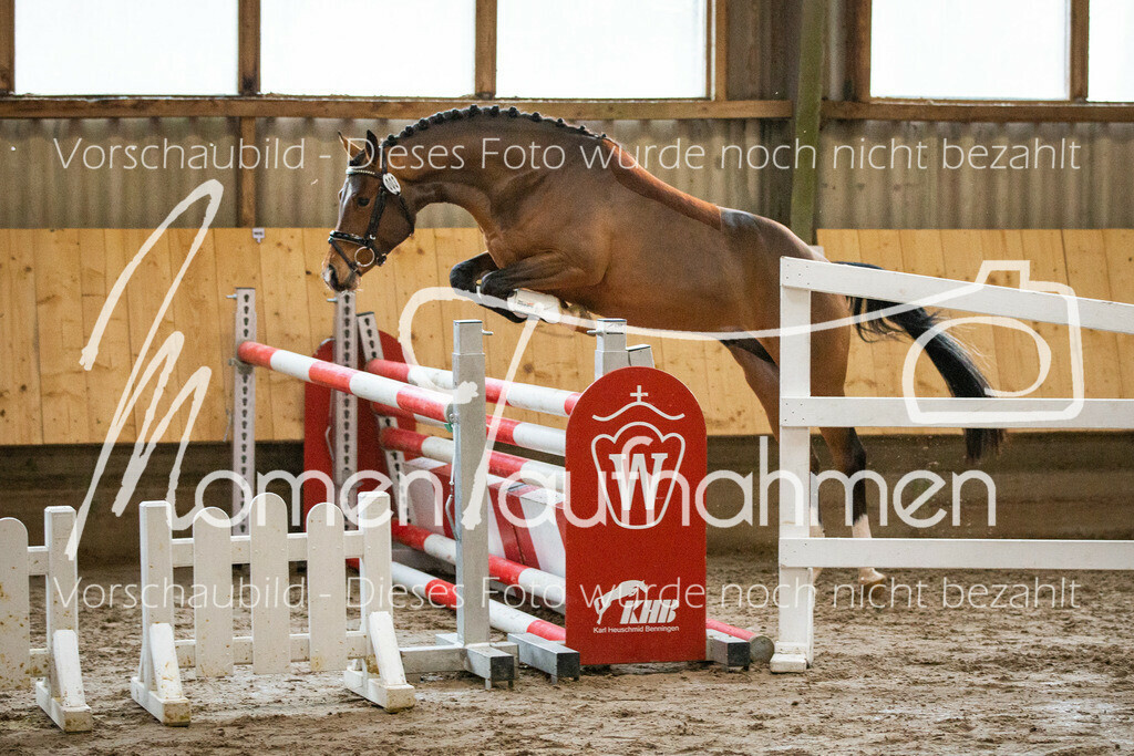Freispringen-Pony-3j-18