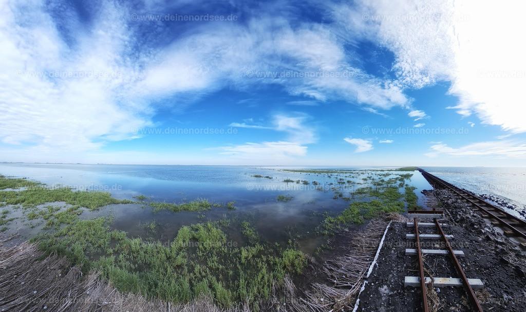 Olanddamm und Salzwiesen bei Überflutung