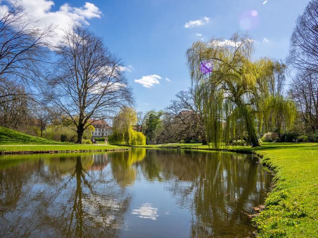 Celle (78) | Celle und Umgebung