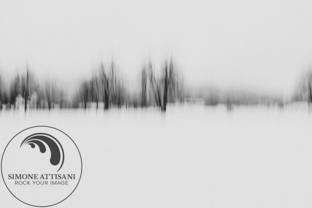 lines black trees  | trying long exposure + movement - Fine art