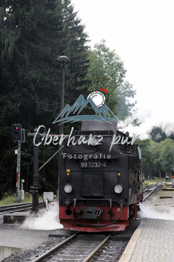 DSC_1902