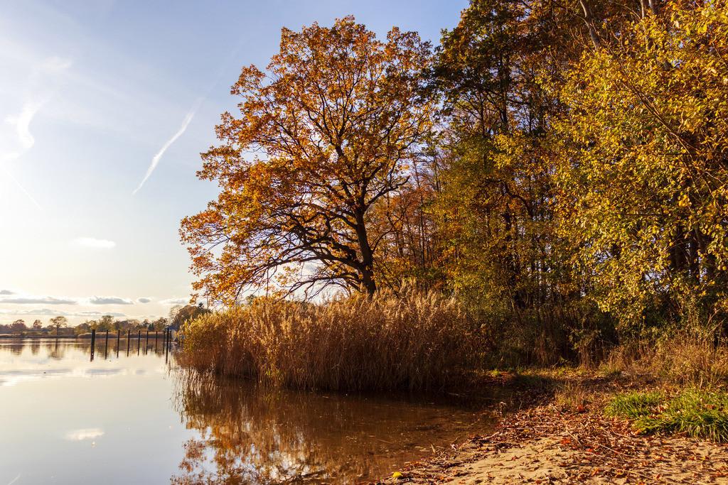 Lindaunis an der Schlei   Lindaunis an der Schlei im Herbst
