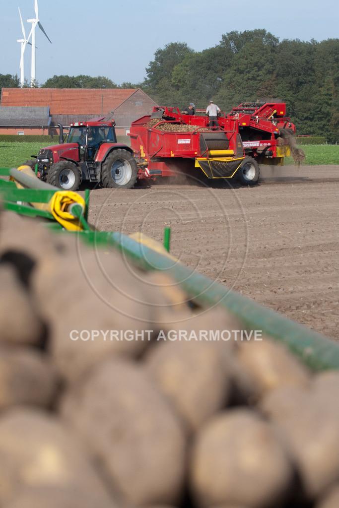 20110929-IMG_6032 | Ernte auf einem Kartoffelfeld - AGRARBILDER