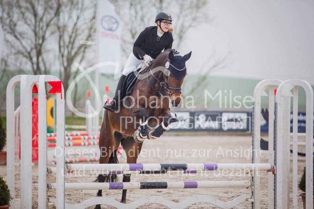 190406_Frühlingsfest_StilE-063 | Frühlingsfest der Pferde 2019, von Lützow Herford, Stil-WB mit erlaubter Zeit