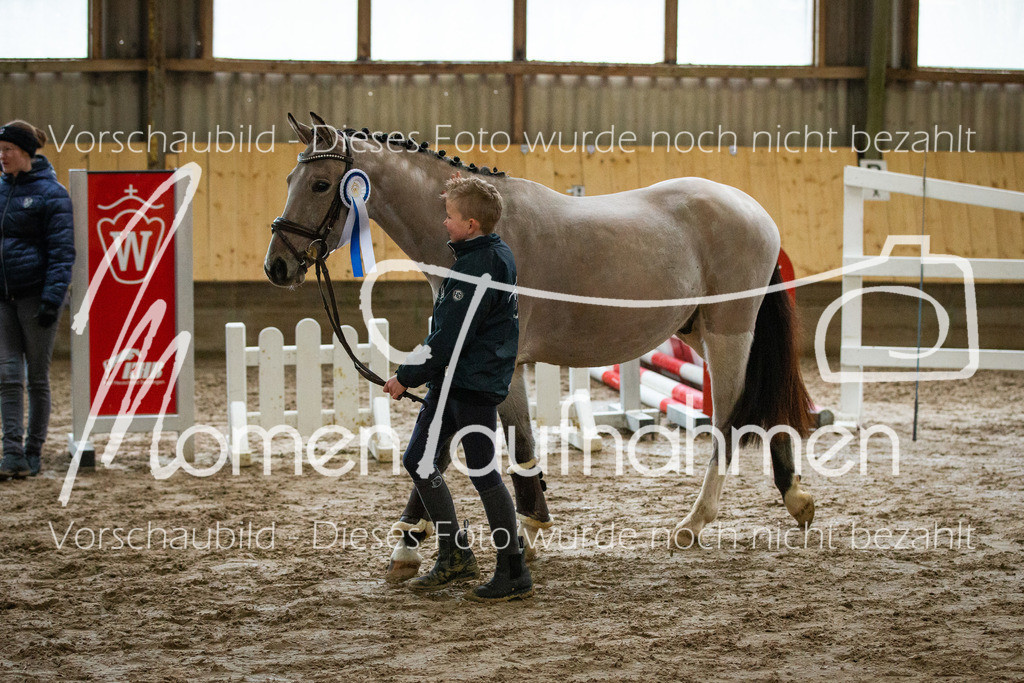 Freispringen-Pony-3j-50