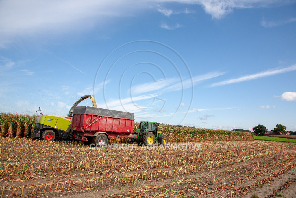 20080914-IMG_8924 | Silomais wird gehäckselt - AGRARFOTO Bilder aus der Landwirtschaft