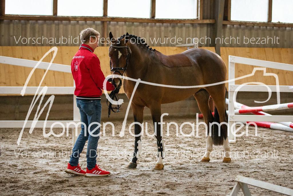 Freispringen-Pony-3j-16