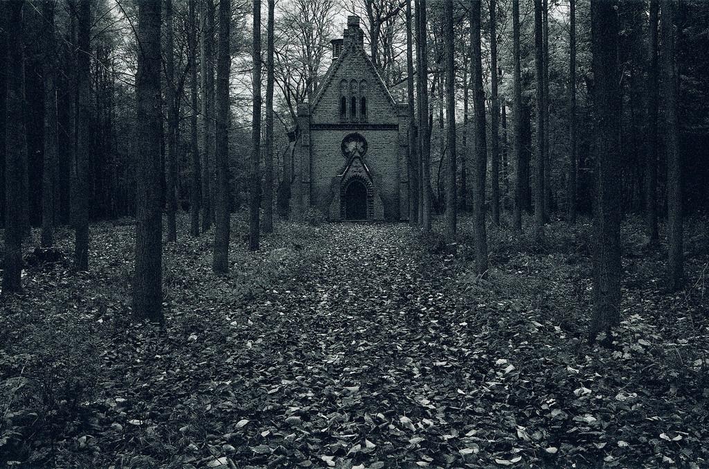 Waldkapelle  | Kirche im Wald bei Heiligendamm