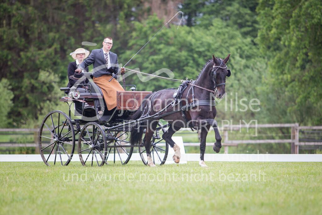 190525_Fahren-023 | Pferdesporttage Herford 2019 Fahren