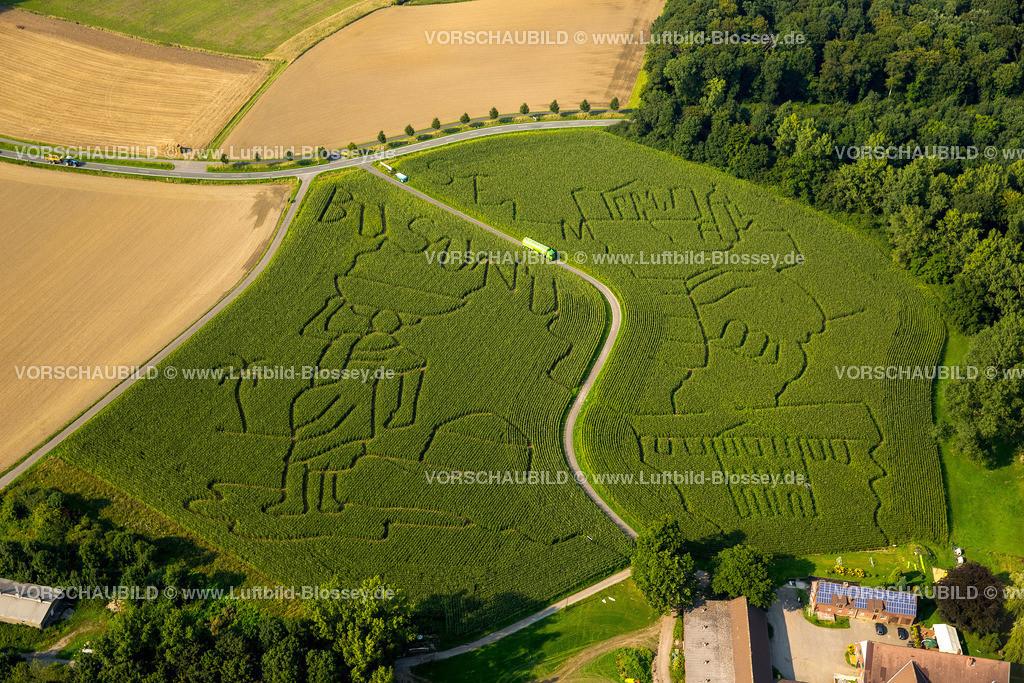 Cappenberg15087783Maislabyrinth | Luftbild, Maislabyrinth,  Lünen, Landwirtschaft, Motive aus Selm, Suchfeld, Ackerbau, Ruhrgebiet, Nordrhein-Westfalen, Deutschland