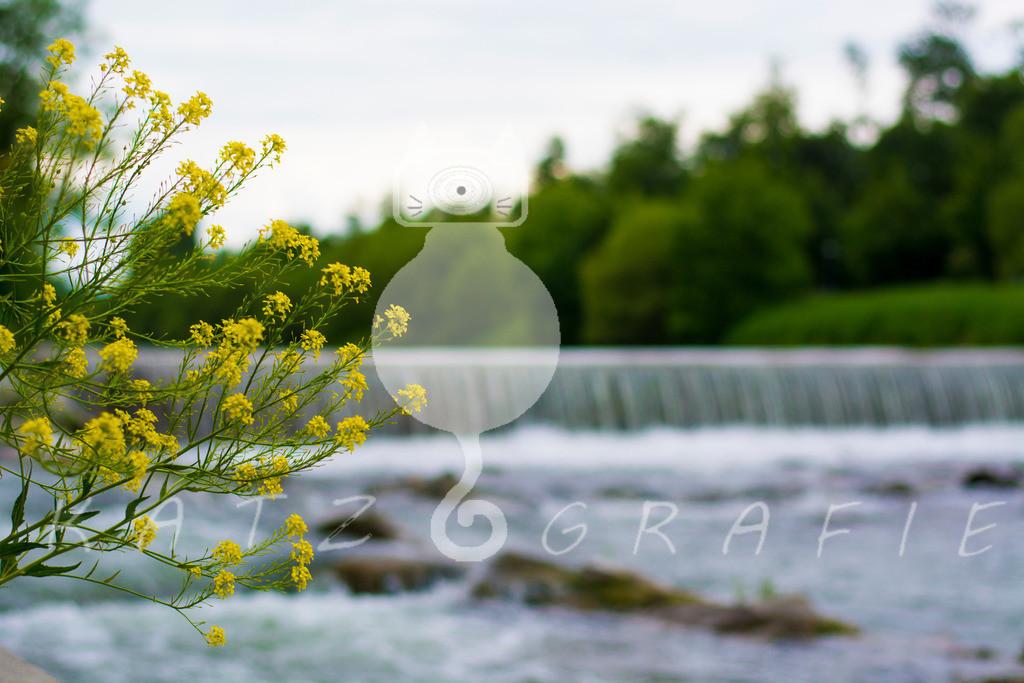 KG_Stpoelten_Water3
