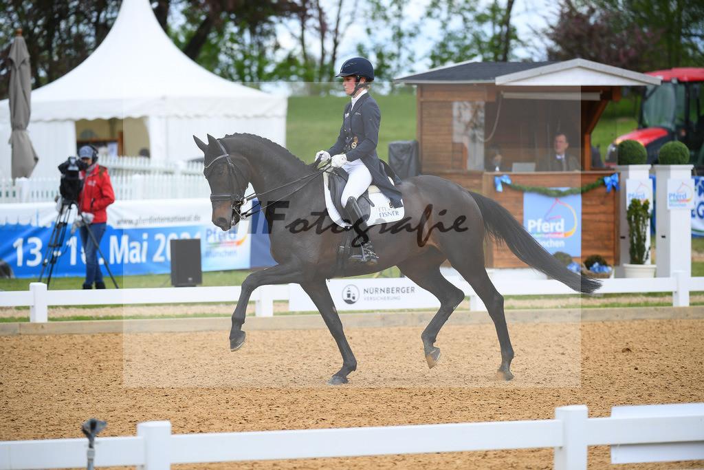 Langehanenberg_Straight Horse Ascenzione_10214102