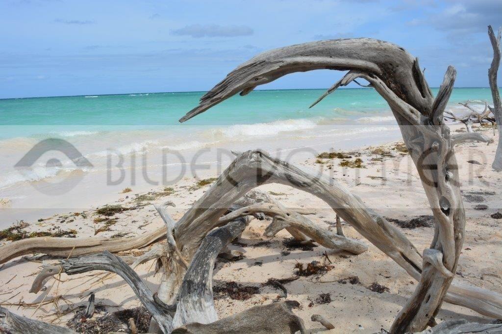 Fotoausstellung malerische Bilder vom Meer   Unberührbarer Strand bei Cayo Jutías Kuba