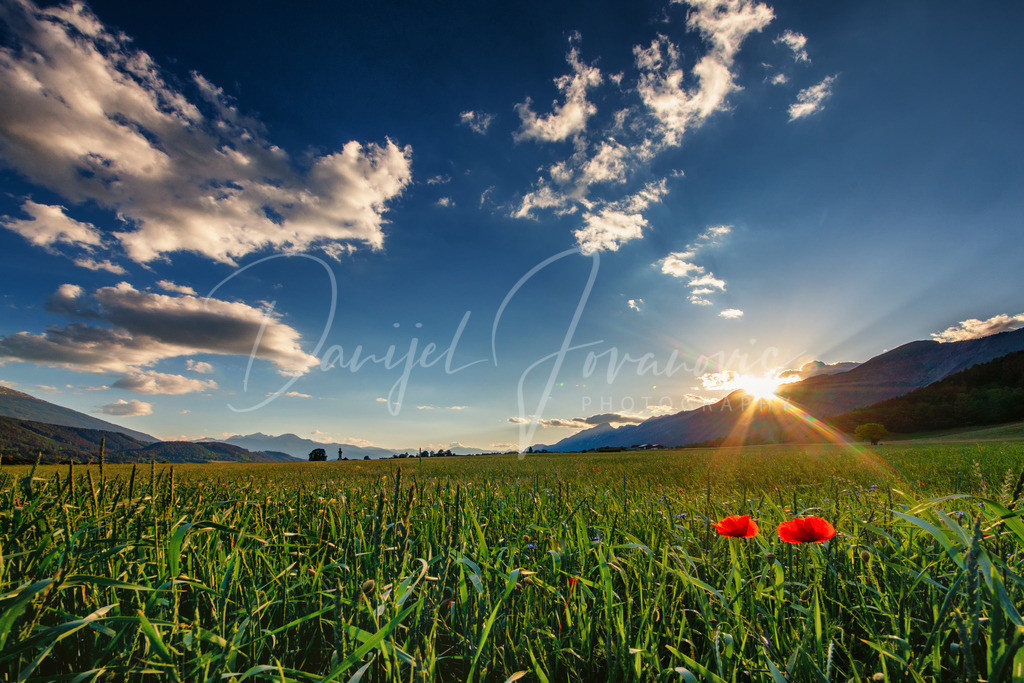 Sonnenuntergang | Sonnenuntergang und Mohnfeld in Mils bei Hall