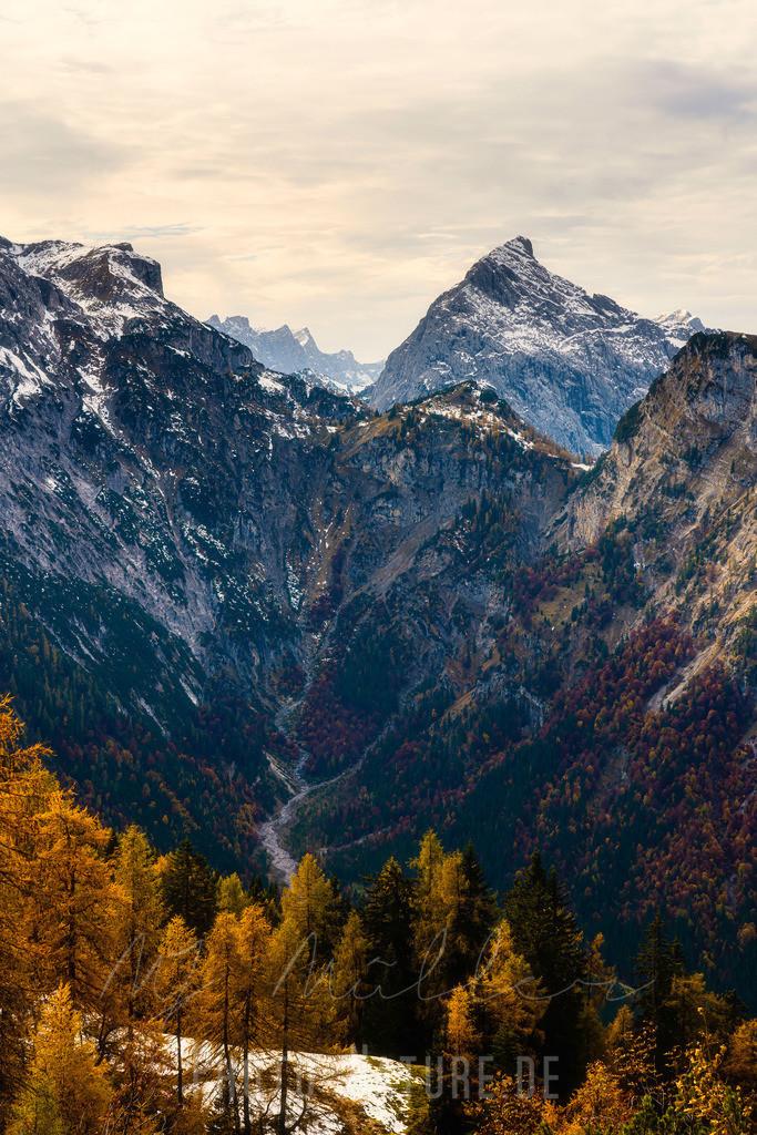 Herbst in den Alpen | Bunte Bäume in den Tiroler Alpen und etwas Schnee auf den Gipfeln