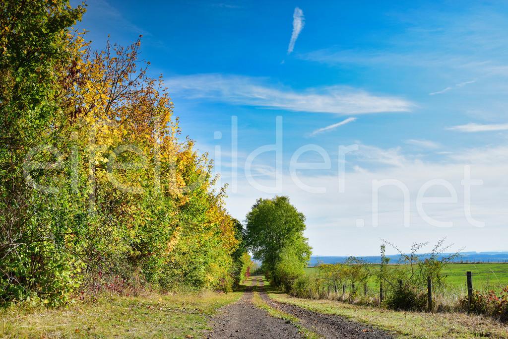 Herbst / Landschaft am Mosenberg | herbstliche Landschaft, fotografiert am Mosenberg in der Eifel (Vulkaneifel)