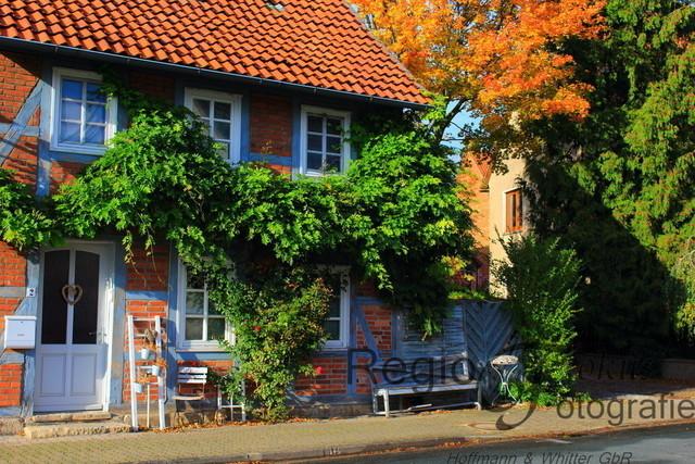 Dorfidylle Wallenstedt | Fachwerkhaus in Wallenstedt