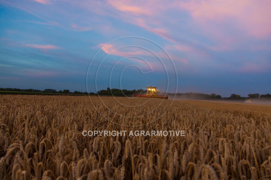 20120817-_MG_8842 | Weizenernte in der Dämmerung
