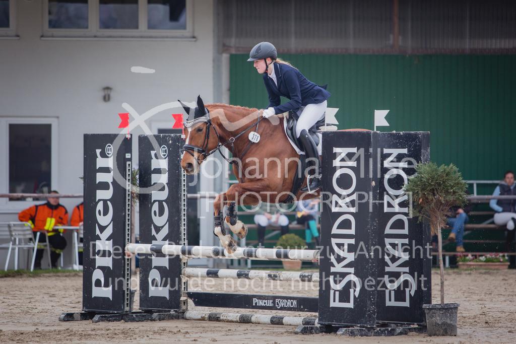190406_Frühlingsfest_StilE-073 | Frühlingsfest der Pferde 2019, von Lützow Herford, Stil-WB mit erlaubter Zeit