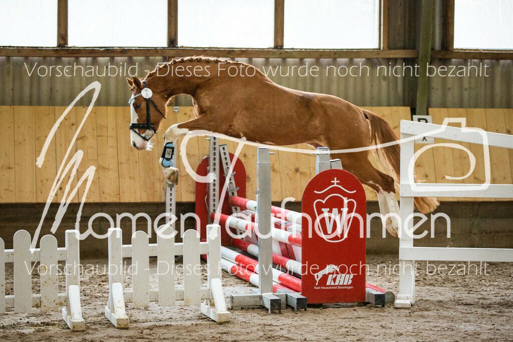 Freispringen-Pony-3j-33