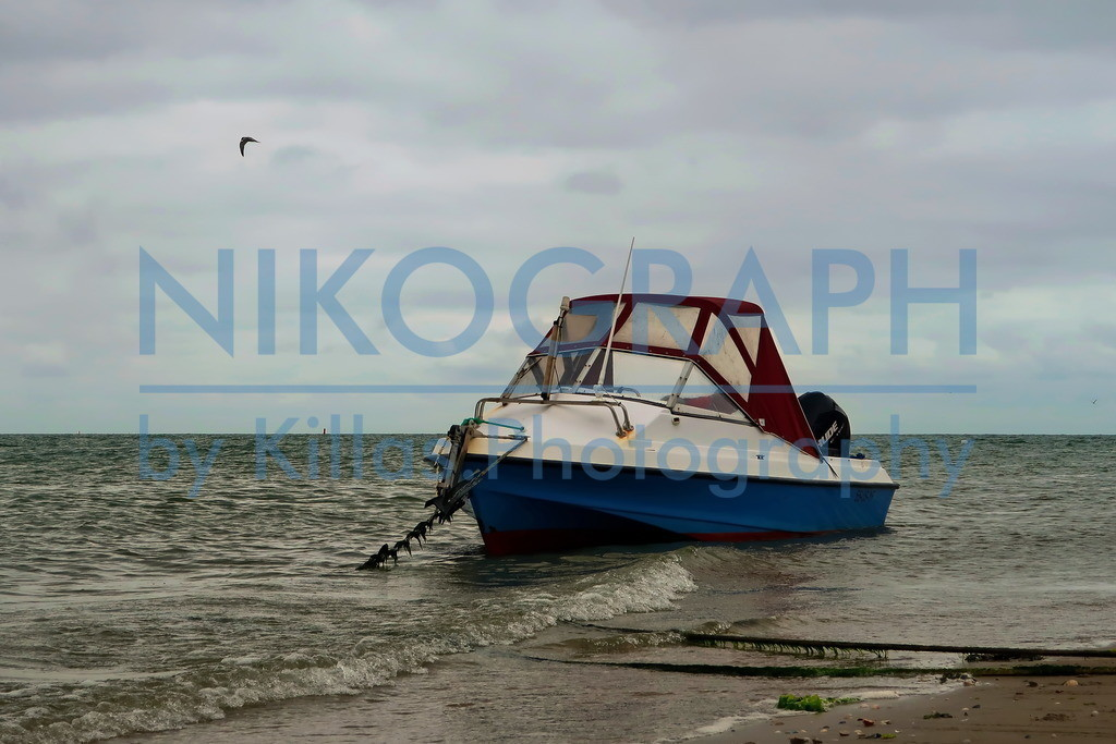 Boot am Strand | Ein Boot am Strand der Nordseeinsel Texel.