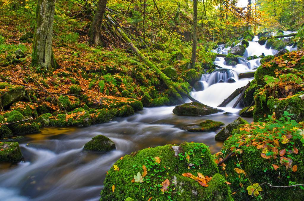 Herbstliche Elz | Herbstliche Elz im mittleren Schwarzwald