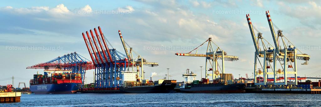 10190427 - Containerterminal Tollerort Panorama