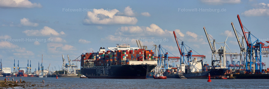 11937591 - Containerschiff YM Worth   Containerschiff beim Verlassen des Hamburger Hafens