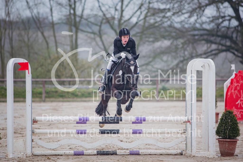 190406_Frühlingsfest_StilE-007 | Frühlingsfest der Pferde 2019, von Lützow Herford, Stil-WB mit erlaubter Zeit
