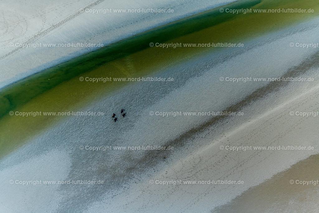 Wattenmeer_ELS_5518210518   Wattenmeer - Aufnahmedatum: 20.05.2018, Aufnahmehöhe: 487 m, Koordinaten: N54°16.308' - E8°38.311', Bildgröße: 8256 x  5504 Pixel - Copyright 2018 by Martin Elsen, Kontakt: Tel.: +49 157 74581206, E-Mail: info@schoenes-foto.de  Schlagwörter:Schleswig-Holstein,Niedersachsen,Gezeiten,Ebbe und Flut,Luftbild, Luftbilder, Deutschland