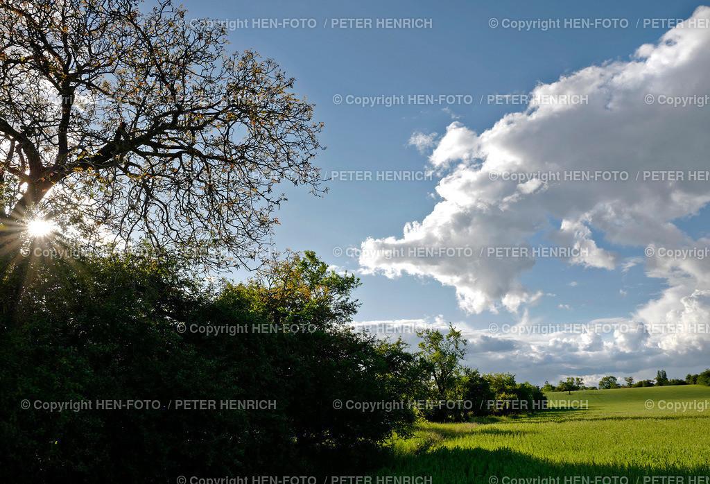 Quellwolken über Getreidefeld in den Streuobstwiesen Darmstadt-Eberstadt copyright by HEN-FOTO | Quellwolken über Getreidefeld in den Streuobstwiesen Darmstadt-Eberstadt copyright by HEN-FOTO Peter Henrich