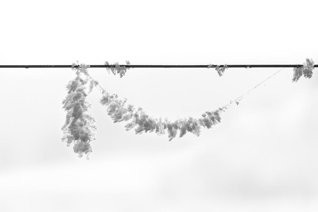 Hängende Eisblumen