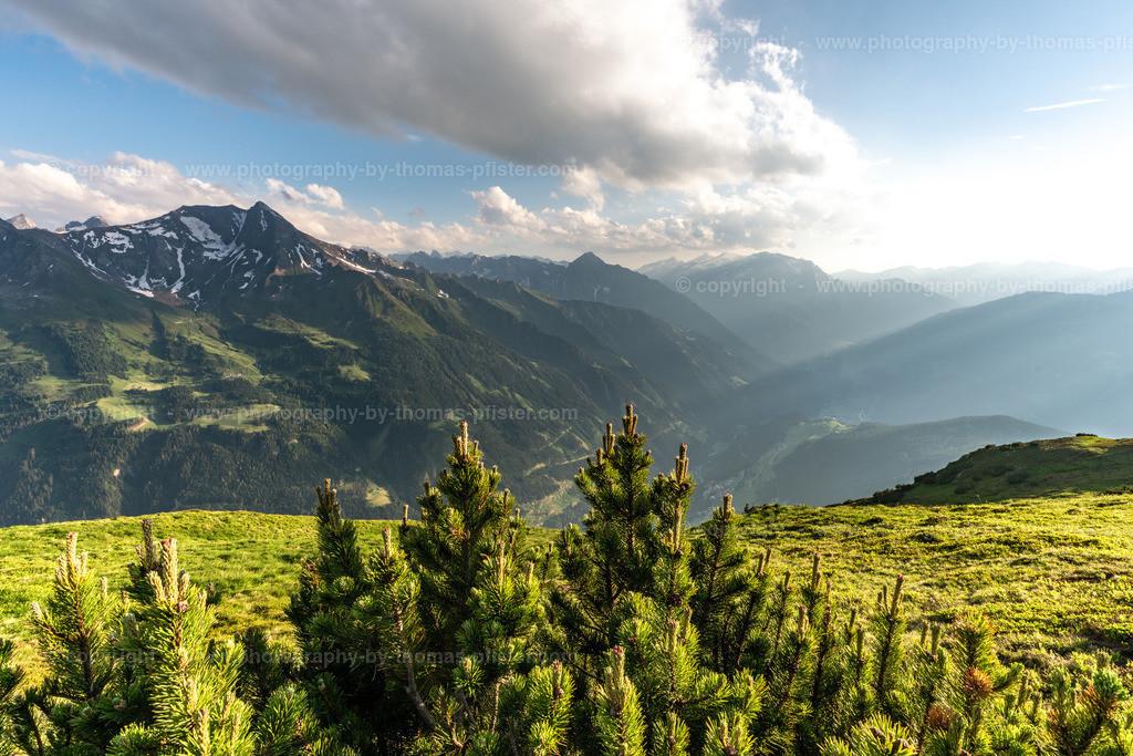 Zillertaler Alpen Goldene Stunde