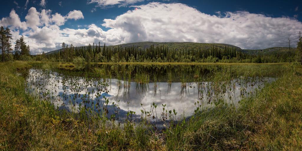 Im Fulufjället Nationalpark | Panorama Aufnahme im Fulufjället Nationalpark.